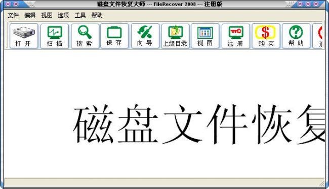 磁盘文件恢复大师2008 v2010版