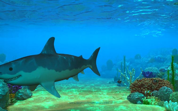 3d海底世界动态桌面(nfs3DUnderWaterLife4) 官方免费版