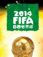 FIFA2014巴西世界杯电脑版1.0.3.121 官方pc版