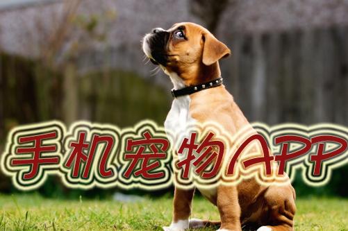 宠物生活app