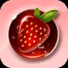 草莓直播 电视TV版v0.3.3.0