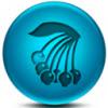 蓝莓直播TV版1.5.0 电视版