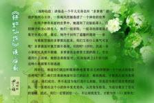 绿野仙踪读后感范文(6篇)