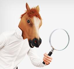 AE预览项目素材文件插件(Mister Horse Previewer)