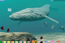 《鲸》Flash动画课件学习模板