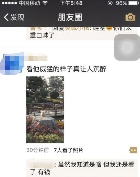 微信红包照片破解版下载_【免费看朋友圈清晰红包 ...