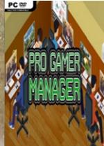 职业玩家经理