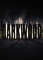 阴暗森林Darkwood3DM免安装未加密版