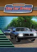 City Car Driving中文汉化版(练车神器)V1.5.9电脑版