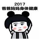2017年新年目�吮砬榘�