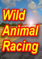 野生动物赛车(Wild Animal Racing)