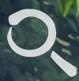 喵搜电脑版v1.0.0 官方最新版
