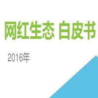 2016网红生态白皮书官方完整版