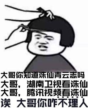 诛仙青云志表情包