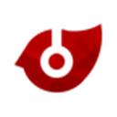 pyro 音乐手机版V2.6.1.3最新版