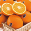 脐橙分享app