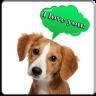 狗语翻译器手机版