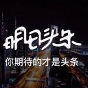 新浪明日头条appV1.0安卓版