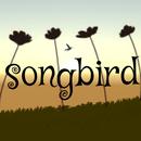 唱歌的鸟songbird