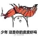 皮皮虾海鲜王争霸表情包最新完整版