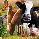 农场世界 mac版V1.0.32