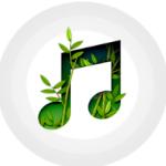 我的放松音乐app