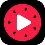 西瓜视频mac版2.0.2官方版