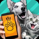 狗语翻译器app手机中文版