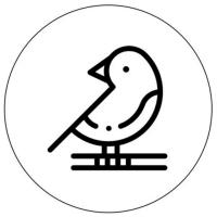 纸上(AR绘画)v1.0.0 安卓版