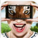 vision animal