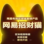 网易招财猫区块链app安卓版