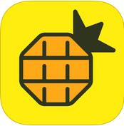 网易菠萝视频app最新版