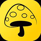 蘑菇钉.py
