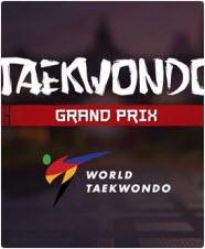 跆拳道大奖赛(Taekwondo Grand Prix) 英文免安装版