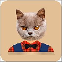 猫头贴纸编辑器