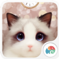 抖音布偶猫眼壁纸动态软件