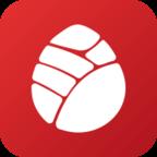 松果保险app