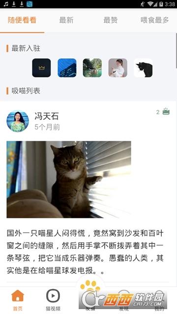 时时猫彩(养猫社区)