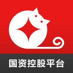 金贝猫(国资控股平台)