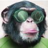 AE一键处理多图层运动脚本EditMonkey