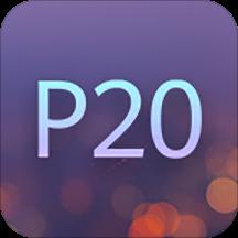 体验P20