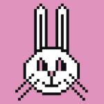 兔兔乐4D全网短视频解析去水印工具免费版
