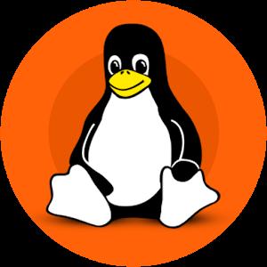 Ubuntu桌面解锁汉化版app