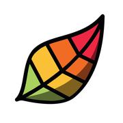 Pigment画画软件