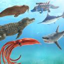 海洋战斗模拟器游戏