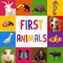 动物初认识游戏