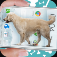 Dog on screen Woof woof joke(狗狗出现在手机屏幕上)