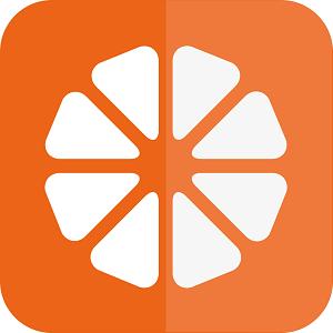 车柚区块链app