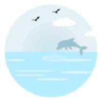 玲珑水晶网页制作感工具v1.0.0安卓版