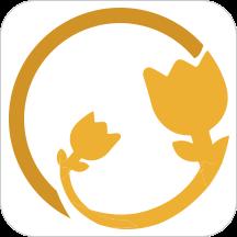 金朵病案app